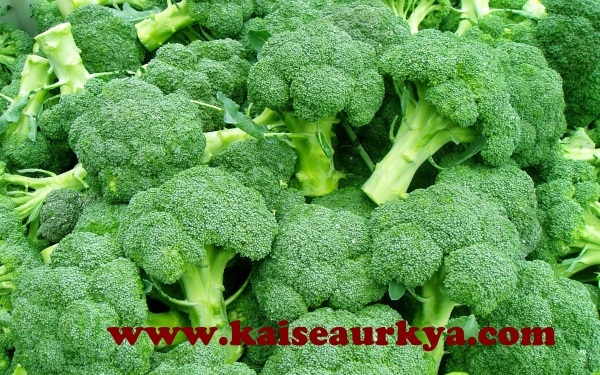 Sprouting Broccoli Ki Kheti Kaise Kare