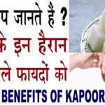 kapoor ke fayde in hindi