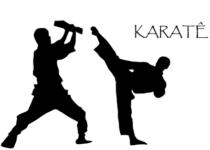कराटे के नियम हिंदी में