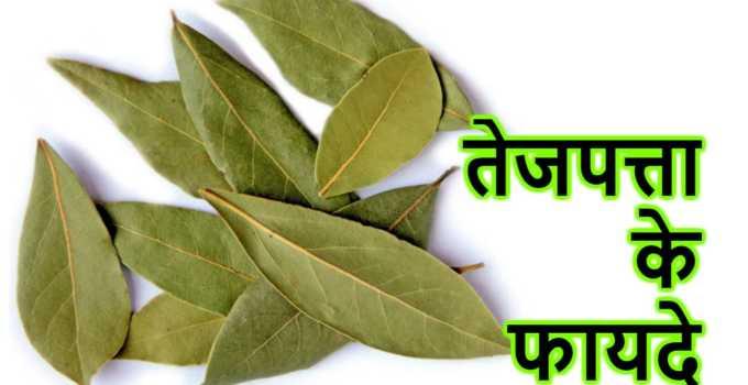 tajpatta ke fayde In Hindi