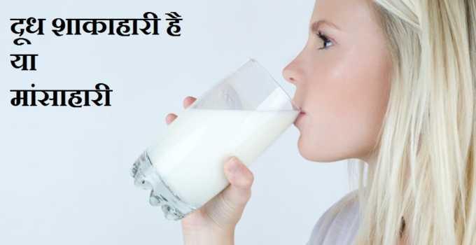 दूध शाकाहारी है या मांसाहारी